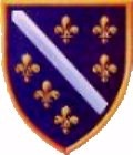 Bosnia's coat of arms at first temporarily in April of 1992. Mostly claimed by the Bosniac Muslims during the war. There were several different variations claimed/used by different groups/militias.